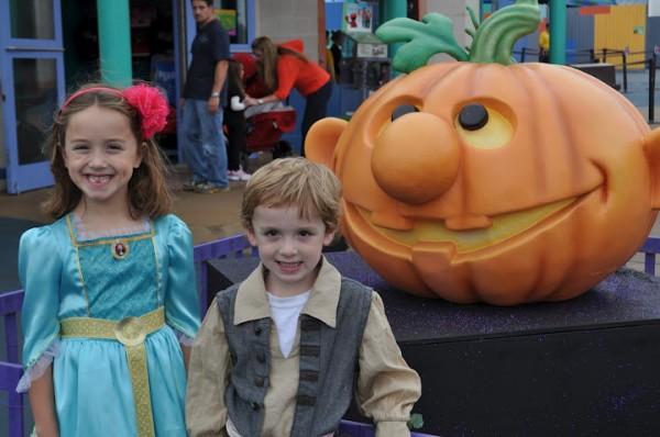 Sesame Place pumpkins