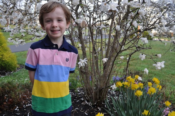 Chaps Spring Clothing for Kids