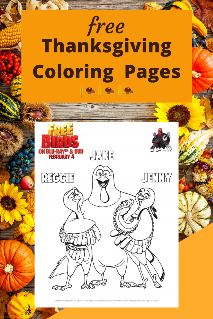 Free Birds Printable Coloring Pages and Activity Sheets