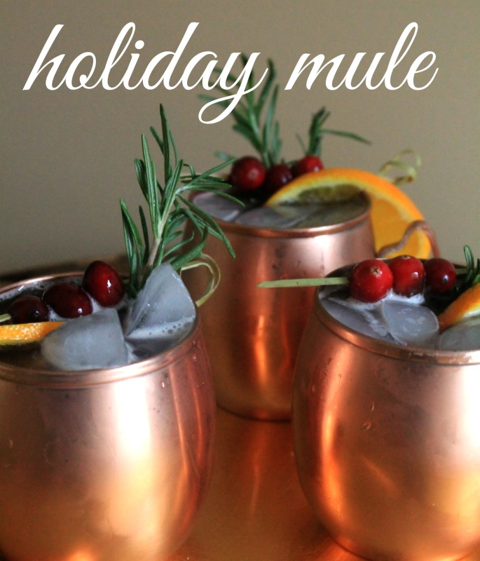 Holiday Mule Recipe with Photos to help your create an inspired Signature Drink