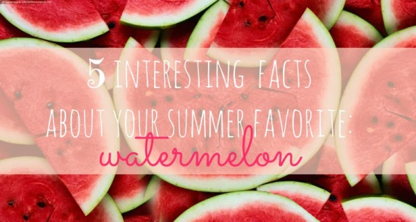 5 interesting facts of watermelon