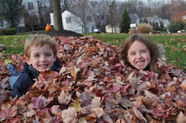 fall leaves straight talk