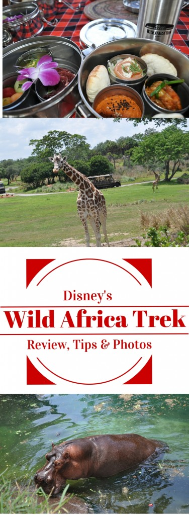Disney's Wild Africa Trek Review Tips and Photos