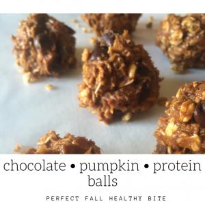 chocolate-chip-peanut-butter-protein-balls