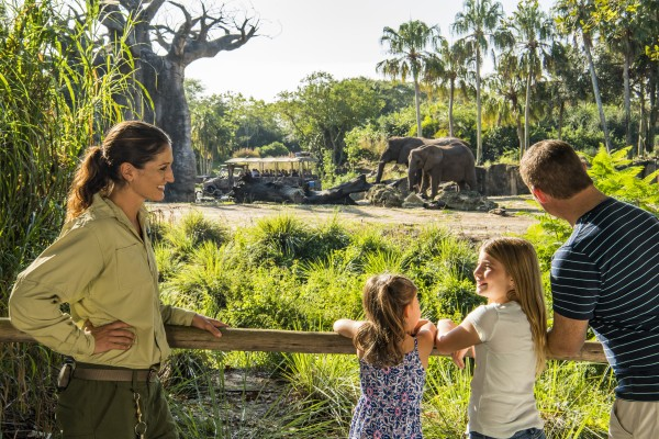 Caring for Giants Elephant Tour Experience at Animal Kingdom