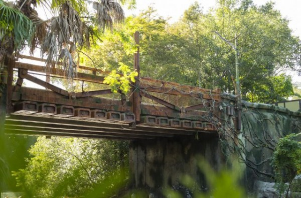 Pandora Sneak Peek at Animal Kingdom