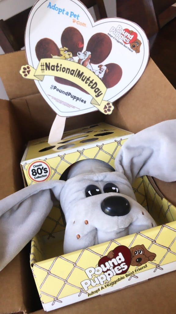 Original Pound Puppies Hit Stores in August