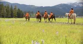 Diamond P Ranch Horseback Riding in Yellowstone Country
