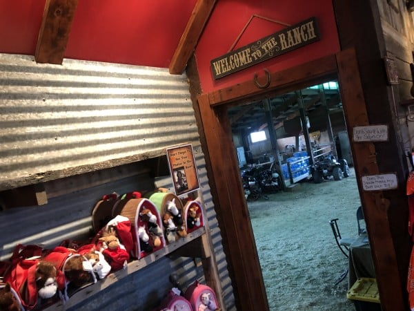 Diamond P Ranch Horseback Riding Review