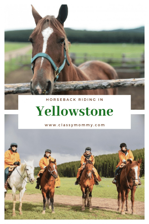 Horseback Riding in Yellowstone Country