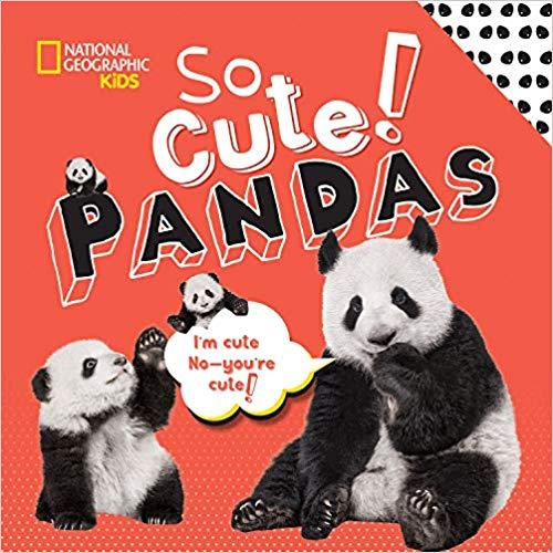So Cute Pandas