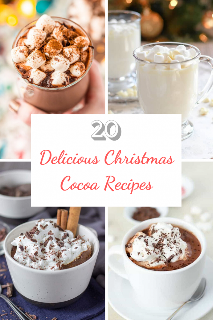 20 Delicious Christmas Cocoa Recipes