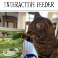 Best Interactive Cat Feeder